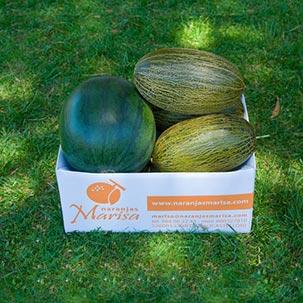 Sandías y melones AGOTADO