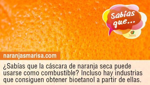 Las cáscaras de naranja secas podrían emplearse para producir bioetanol