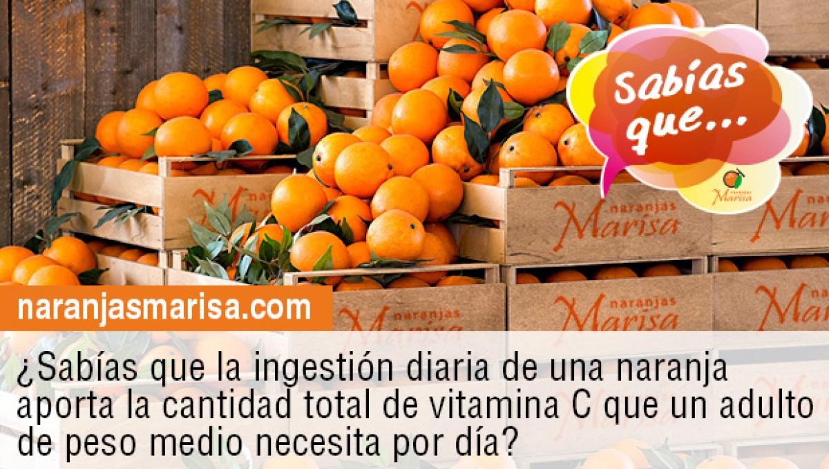 Ingerir una naranja al día te aporta la cantidad total la vitamina C que un adulto necesita