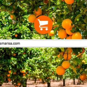 Comprar productos Online en Naranjas Marisa