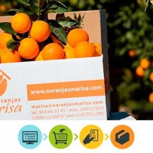 Cómo ha evolucionado la venta de naranjas en los últimos años