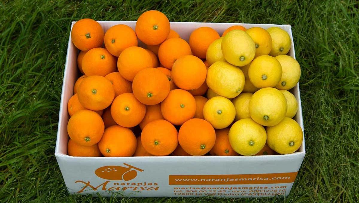Caja de Naranjas y limones 15kg.