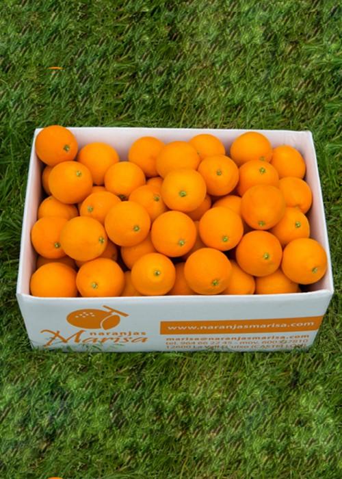 Caja 10kg naranja Navelate