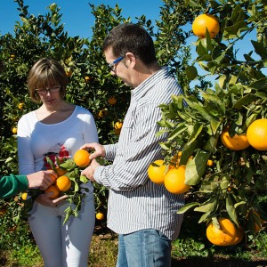 La importancia de comprar directamente al agricultor