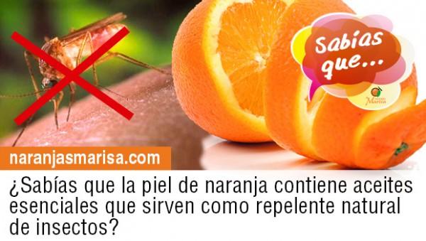 La naranja como repelente de insectos