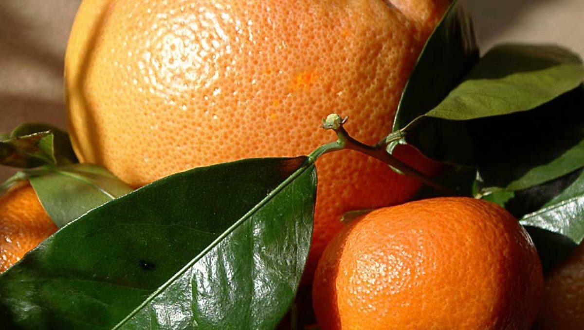 Caja mixta naranjas-clementinas 10kg. AGOTADO