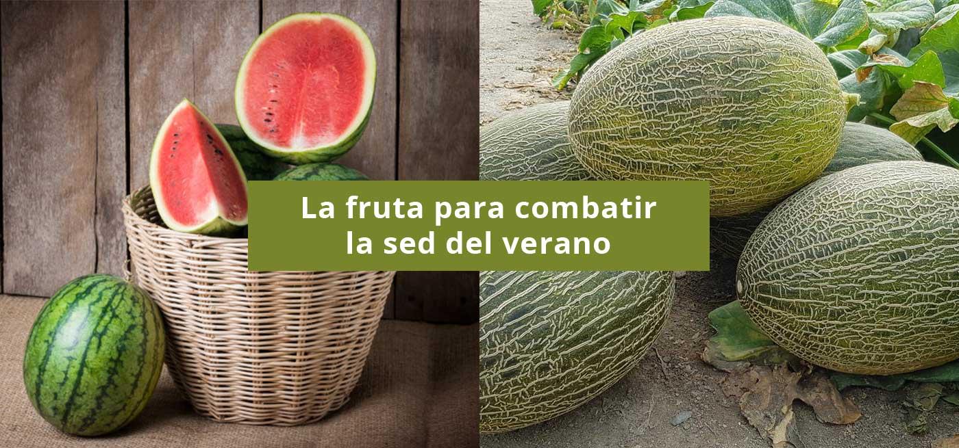 banner-sandia-melones-web