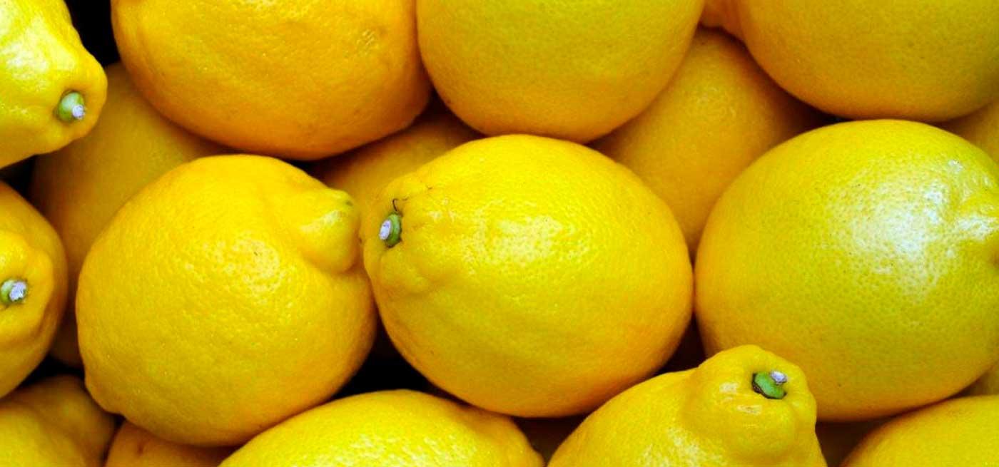 banner-limones-naranjas-marisa