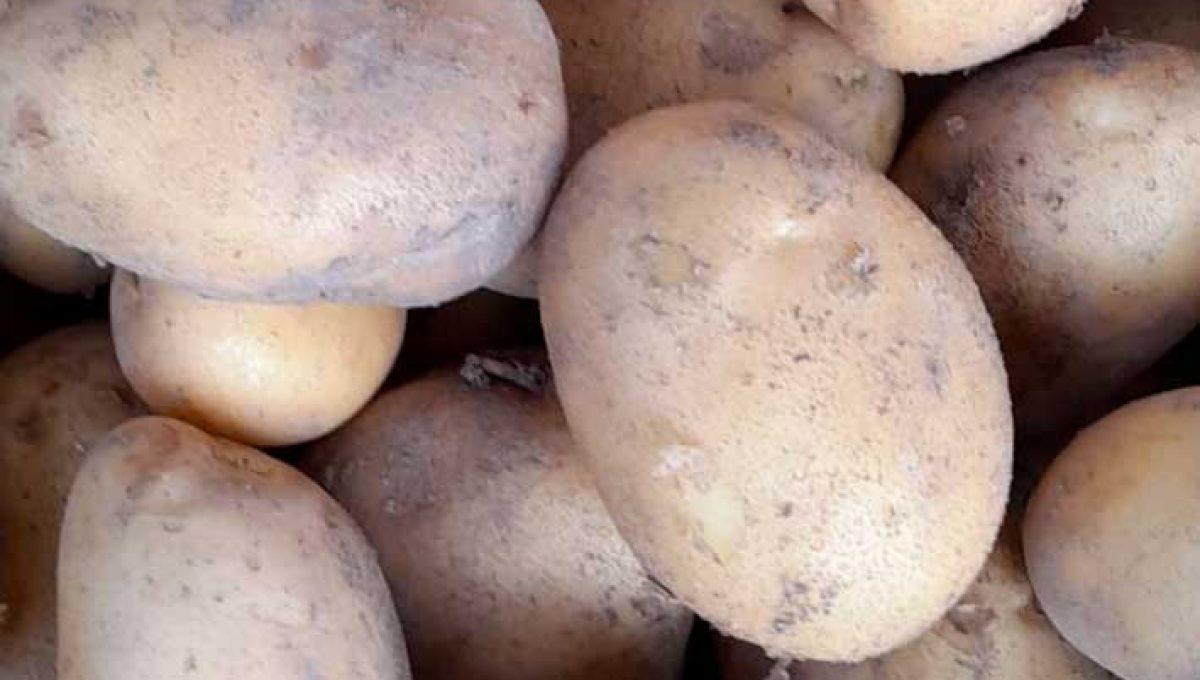 Patata Fábula